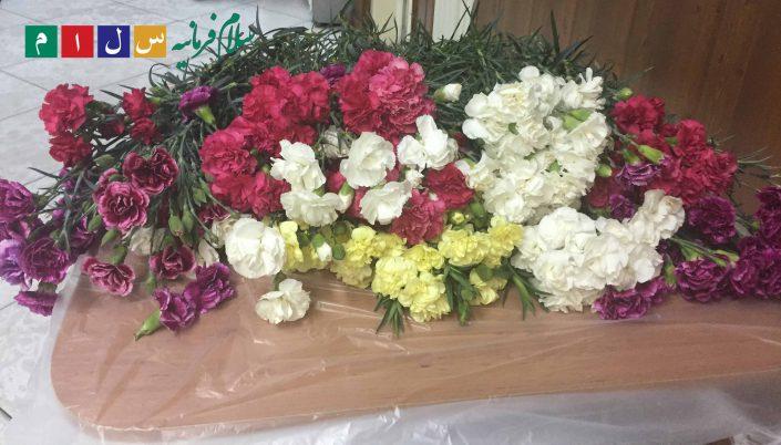 روز مادر سلام فرمانیه